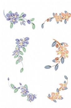小清新植物花朵图片