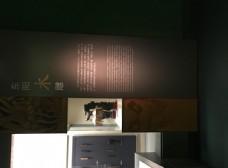 杭州博物馆图片