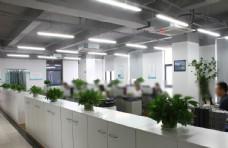 网络公司办公室图片