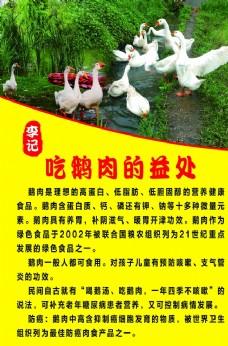 吃鹅的益处图片